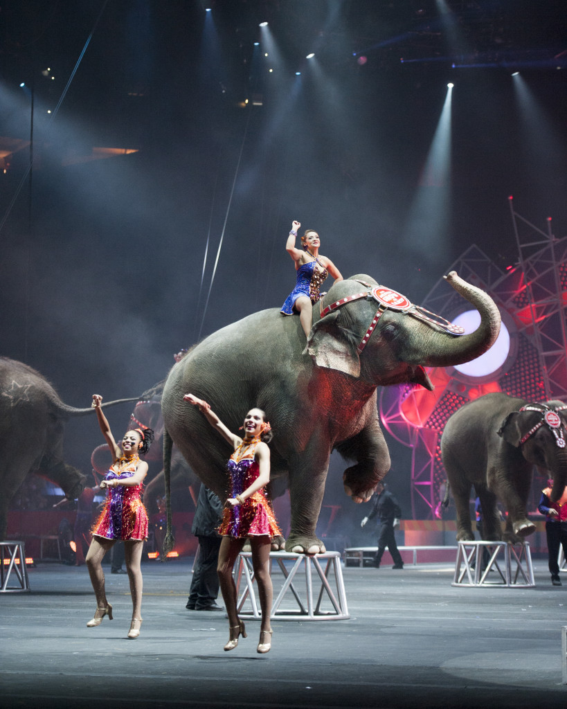 #circus #Cincinnati