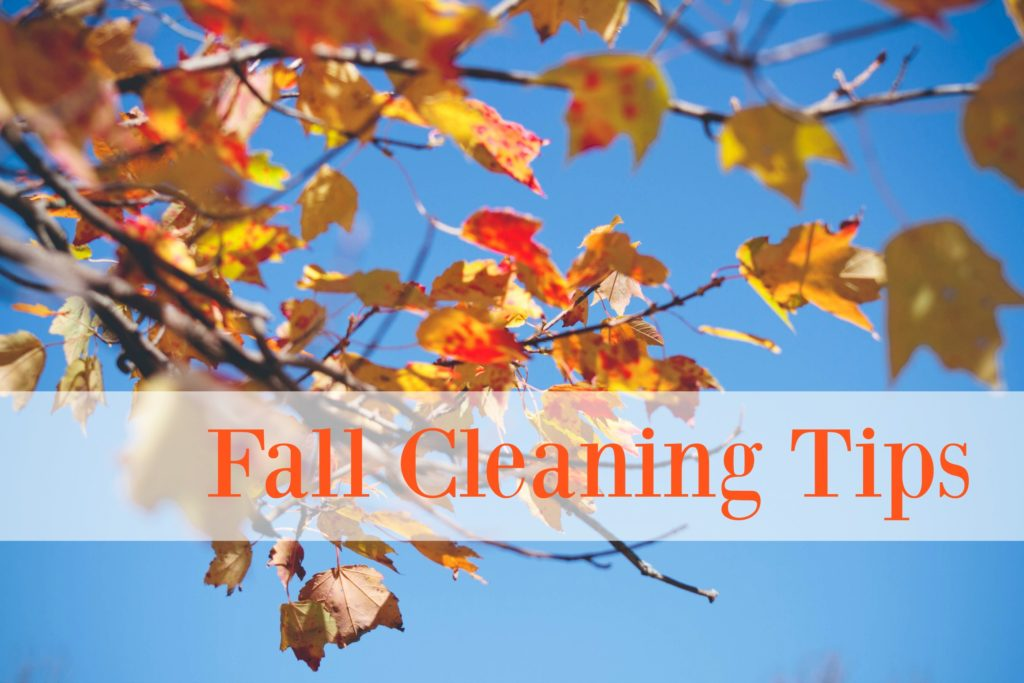 fall_cleaning_tips